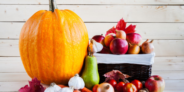 Autumn harvest of fruits and vegetables on a wooden background